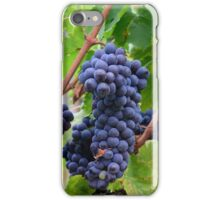 Tuscany grapes iPhone Case/Skin