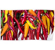 Peppers - Farmers Market - Madison - Wisconsin Poster
