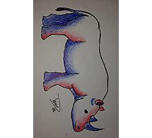 Rhino in Red & Blue Photographic Print