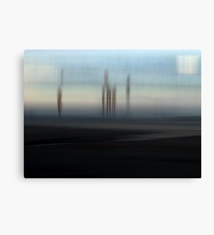 Fringe Dwellers Canvas Print