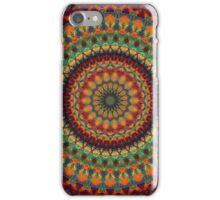 Mandala 14 iPhone Case/Skin