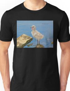 Chick Looking for Mum (Baby Seagull) Unisex T-Shirt