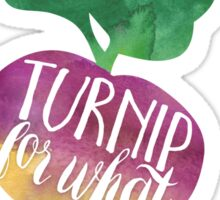 Turnip for What Sticker