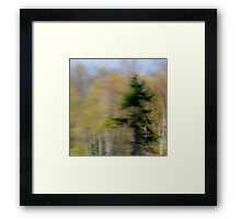 Vibrant Trees 3 - Abstract Framed Print
