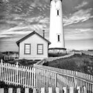 Pigeon Point Lighthouse - California USA by TonyCrehan