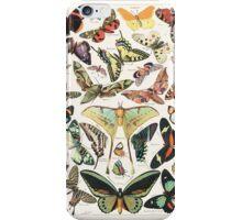 Vintage butterfly illustration iPhone Case/Skin