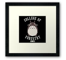 College of Forestry Framed Print