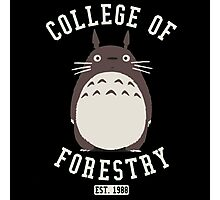 College of Forestry Photographic Print