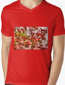 Dogwood Blossoms Mens V-Neck T-Shirt