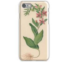 James Bolton, active , Showy Orchis iPhone Case/Skin