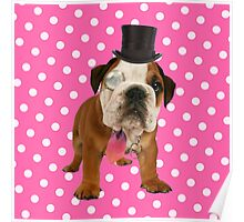 British Bulldog Puppy Poster