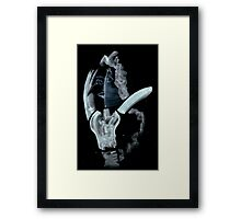 0047 - Brush and Ink - Face Framed Print