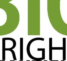 Big Bright Beautiful World- Shrek The Musical Sticker