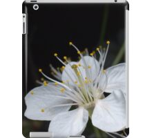 Cherry white flower iPad Case/Skin
