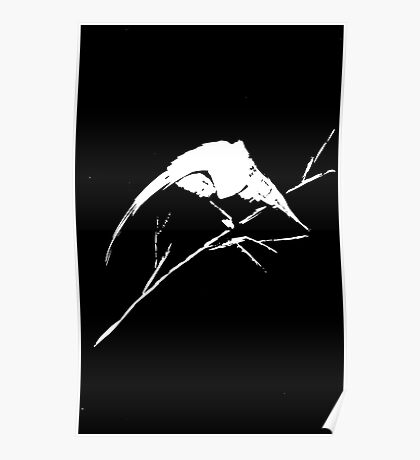 0033 - Brush and Ink - Bird Watcher Vector Rebuild 2 Poster