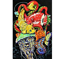 Seafood Combo Photographic Print