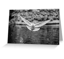 The flight of the dove Greeting Card
