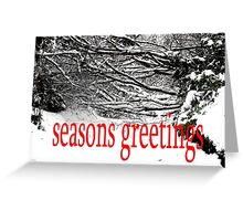 SEASONS GREETINGS 40 Greeting Card