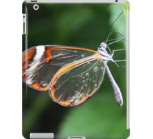Wings Of Glass iPad Case/Skin
