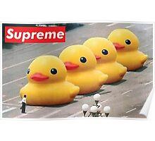 Supreme Ducks Poster