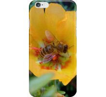 Valuable bees iPhone Case/Skin