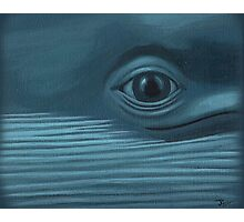 Blue Whale Photographic Print
