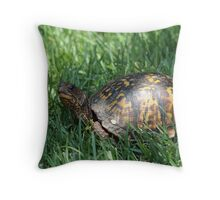 Carolina Box Turtle Throw Pillow