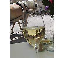 A horse in my glass Photographic Print