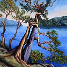 Southern Gulf Islands Afternoon by TerrillWelch