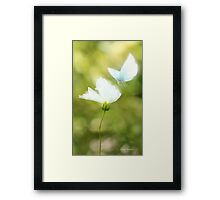 Angelic Butterfly Framed Print