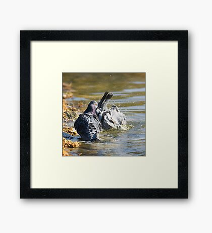 Dude! You'll scare all the chicks! Framed Print
