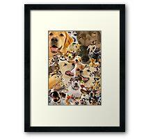 Adorable Dog Collage Framed Print