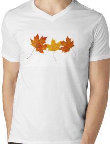 Maple leaves Mens V-Neck T-Shirt
