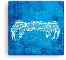 Crab, Illustration Over Nautical Map Canvas Print