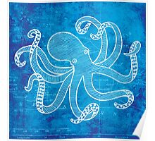 Octopus, Illustration Over Nautical Map Poster