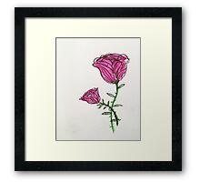 a pink rose Framed Print