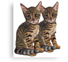 Bengal Kittens: Color Pencil Drawing of CATS Canvas Print