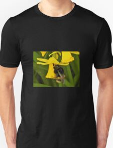 Spring bee Unisex T-Shirt