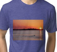 Dolphin at Sunset Tri-blend T-Shirt