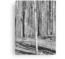 Black And White Disc Golf Basket Canvas Print