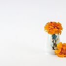 Two Marigolds - still life by DPalmer