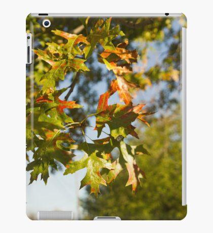 Auntumn leaves iPad Case/Skin