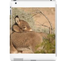 Baby Donkey. iPad Case/Skin