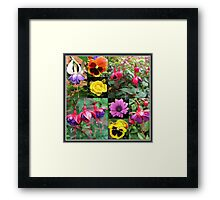 Summer Flowers Collage Framed Print