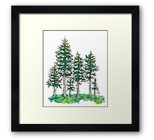 Watercolor and Ink Cypress Tree Framed Print