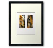 Rustic II Framed Print