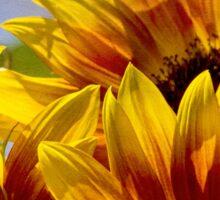 Sunflower tapestry Sticker