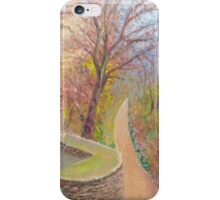 Ancient stone and brick walls of the Alhambra, Granada, Spain iPhone Case/Skin