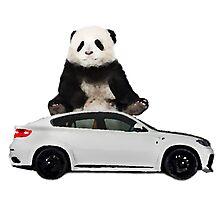 White X6 Look Like A Panda Photographic Print