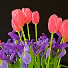 Tulips and Irises by John Butler